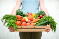 All local and organically grown fruits & vegetables in wooden vegetable crate held by a woman. Shallow dof, crisp focus across all the vegetables. Crate contains: peaches, green apple, peppers, green beans, rondelle carrots, baby carrots, zucchini squash, tomatoes, basil, fennel, kale, lettuce, broccoli, potatoes and radishes.