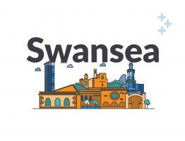 Swansea social care city skyline